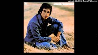 David Pomeranz - Tryin' to Get the Feeling Again