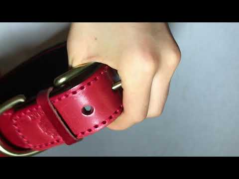 Legionaries Leather Dog Collar - Roman Dog Collars