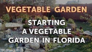 Starting a Vegetable Garden in Florida