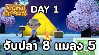 Animal Crossing : Day 1 จับปลา 8 ชนิดกับแมลงอีก 5 ...