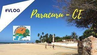 Passarinhando em Paracuru- CE AVES MIGRATÓRIAS