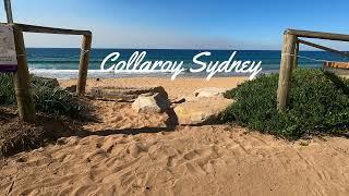 COLLAROY SYDNEY - FPV DRONE FOOTAGE