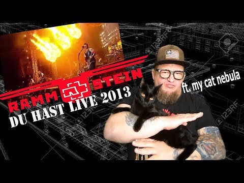 """First Reaction to RAMMSTEIN """"Du Hast"""" Live at Download Fest 2013"""