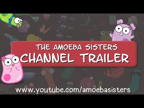 The Amoeba Sisters Channel Trailer (updated)