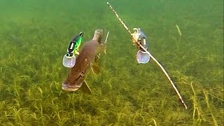 Pike attack Mike & Ricky fishing lures. Gäddfiske. Рыбалка щука атакует рыболовные приманки