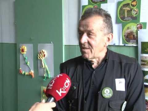 Predavanja o gljivama u OS Sutjeska