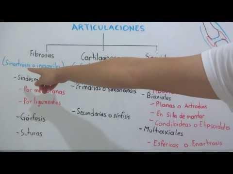 Alimentos crudos enfermedad de las articulaciones