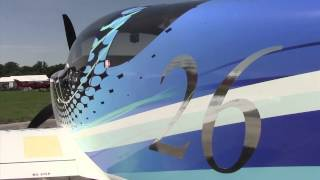 Plane Vinyl Paintless Graphics