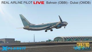 Real Airline Pilot LIVE (X-Plane 11 - ZIBO MOD 737) POLISH
