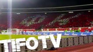 DELIJE vs. GROBARI vs. ZABRANJENI .. Marakana Stadium - 21.03.2012