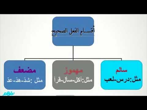 الفعل الصحيح والفعل المعتل - نحو - لغة عربية - للصف الأول الإعدادي -  الترم الأول -  نفهم
