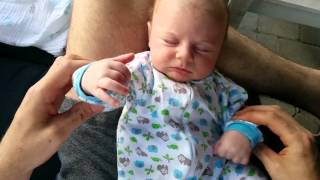 What does a newborn baby dream about?