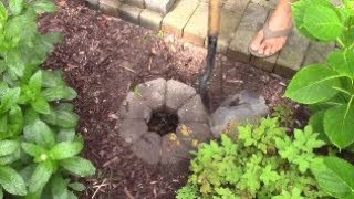 Dispose into Dog Poop Hole to Bury and Hide Pet Waste in Yard Cleanly