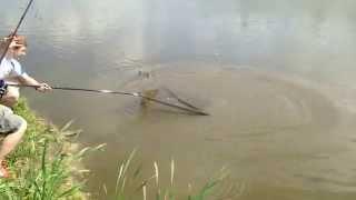 Рыбалка на рыболовная усадьба остров форум
