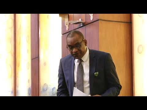 Hon Benjamin Wayo,21 May 2019   Motion on need for the National Assembly to approve the proposal of