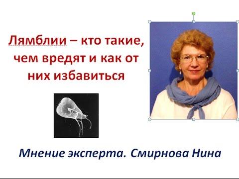 Антитела лямблии ифа