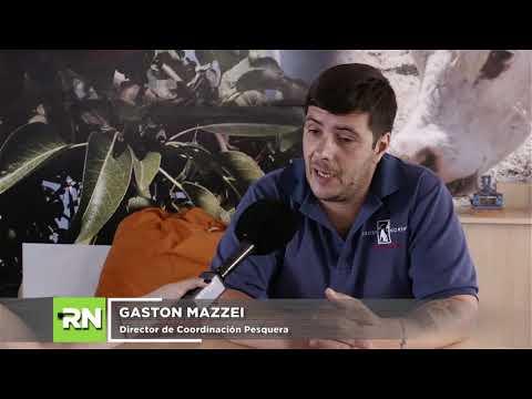 Gastón Mazzei
