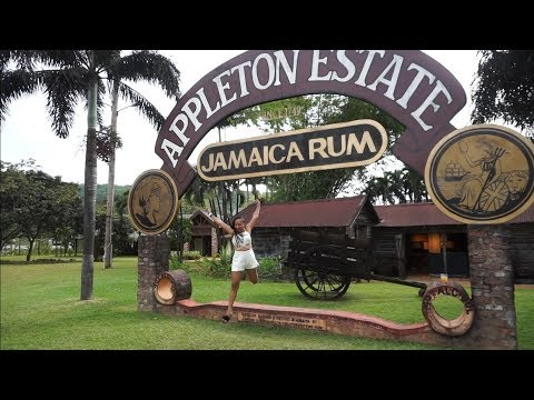 Appleton Estate Rum Tour Vlog | Jamaica