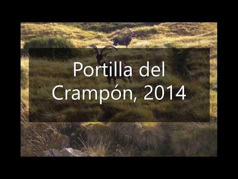 Portilla del Crampón 2014