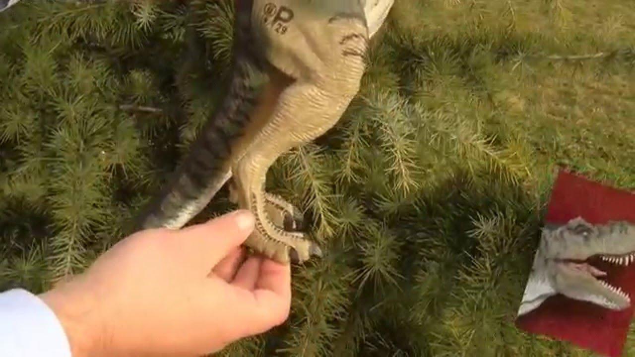 El tiranosaurius Rex tímido