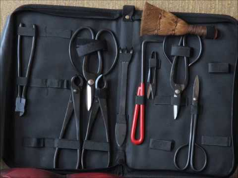 10 Bonsai Werkzeuge