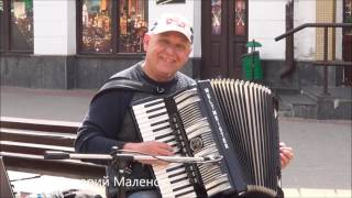 Порвал улицу и заставил прохожих танцевать... Классный музыкант!!! Brest! Street! Music!