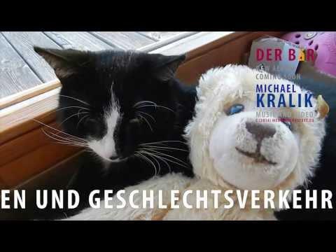 Der Bär - Michael Kralik
