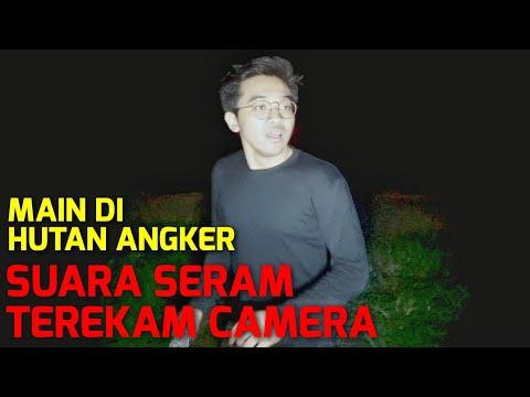 PERMAINAN DI HUTAN ANGKER TENGAH MALAM!