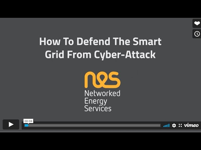 How to Defend the Smart Grid from Cyber-Attack?