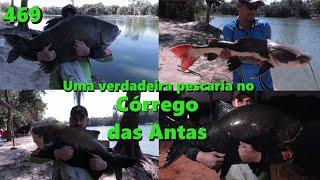 Pescaria no Córrego das Antas - Fishingtur na TV 469