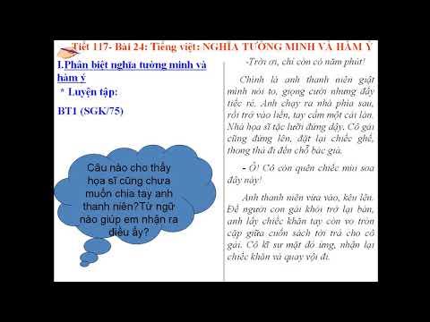 NGỮ VĂN 9 - BÀI 24 + 25 - TIẾNG VIỆT - NGHĨA TƯỜNG MINH VÀ HÀM Ý