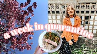 a week in UK quarantine | starting a book club & lockdown life