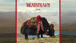 Beatsteaks - 40 Degrees  (Audio)