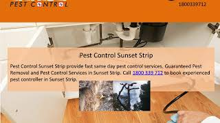 Eco-Friendly & Affordable Pest Control Solutions