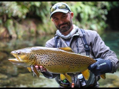 Fly Fishing New Zealand - 'THE DREAM STREAM'
