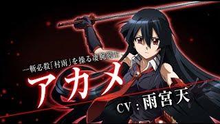 vidéo Akame ga kill!