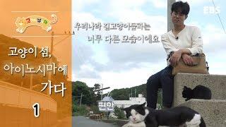 고양이를 부탁해 - 고양이섬, 아이노시마에 가다_#001
