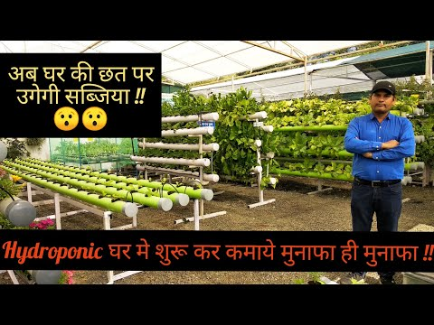 Hydroponic घर में शुरू कर कमाये मुनाफा ही मुनाफा | Soil Less Farming | Kitchen Garden | Hello Kisaan