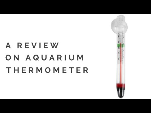 Who should use Aquarium Thermometer??