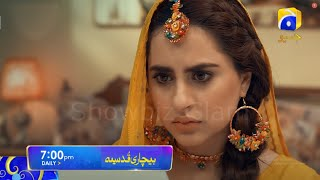 Bechari Qudsia Mega Episode 4 & 5 Teaser Promo Review Har Pal Geo Drama-Bechari Qudsia Episode 4