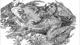 Claver Gold Ft. Murubutu - La rana e lo scorpione -
