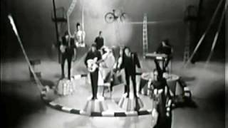 The Animals - Bring It On Home To Me (Live, 1965) ♫♥50 YEARS