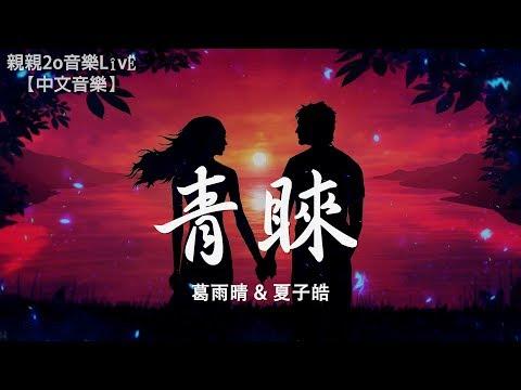 葛雨晴 & 夏子皓 - 青睞【動態歌詞Lyrics】