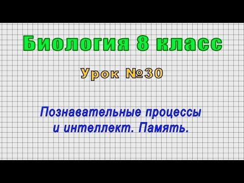Биология 8 класс (Урок№30 - Познавательные процессы и интеллект. Память.)