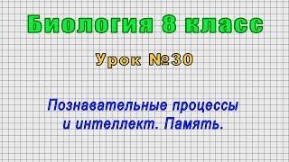 Биология 8 класс Урок 30
