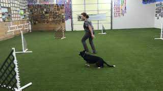 The Wing Circle for Agility