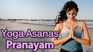 Pranayam & Yoga Asanas - Yoga For Beginners - Download this Video in MP3, M4A, WEBM, MP4, 3GP