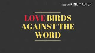 True love story (text story): Love birds against the world - Video Youtube