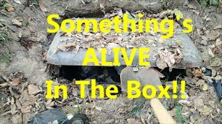 Creepy Homeless Camp With a Buried Box. | Aquachigger