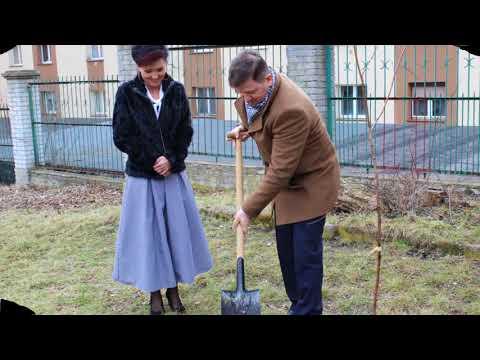 Sadzenie nowego drzewka